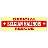 Belgian malinois Single