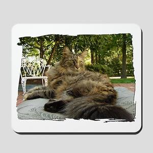 Maine Coon cat bushy tail Mousepad