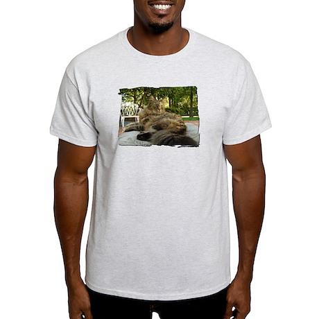 Maine Coon cat bushy tail Light T-Shirt