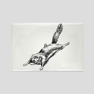 Flying Squirrel Illustration Rectangle Magnet