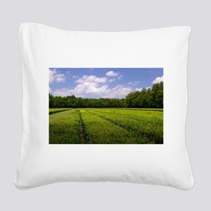 Tea Fields Square Canvas Pillow