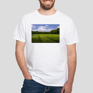 Tea Fields T-Shirt