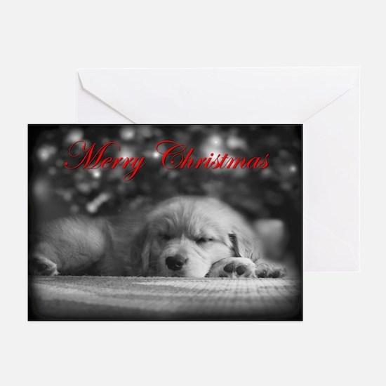 Merry Christmas Golden Retriever Cards