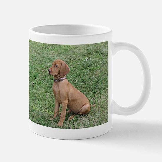 Vizsla Puppy Sitting - ZsaZsa Mugs
