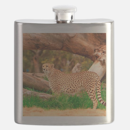 Unique Captive Flask