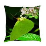 Cloudless Sulfur Butterfly Everyday Pillow