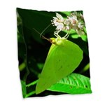 Cloudless Sulfur Butterfly Burlap Throw Pillow