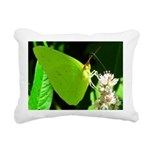 Cloudless Sulfur Butterfly Rectangular Canvas Pill