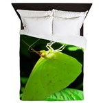 Cloudless Sulfur Butterfly Queen Duvet