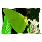 Cloudless Sulfur Butterfly Pillow Case