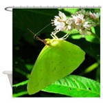Cloudless Sulfur Butterfly Shower Curtain
