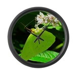 Cloudless Sulfur Butterfly Large Wall Clock
