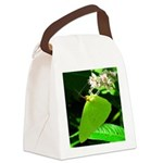 Cloudless Sulfur Butterfly Canvas Lunch Bag