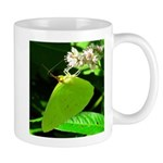 Cloudless Sulfur Butterfly Mugs