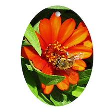 Bee on Orange Daisy Oval Ornament