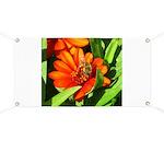 Bee on Orange Daisy Banner