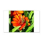 Bee on Orange Daisy Wall Decal