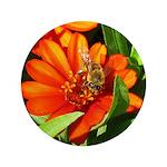 Bee on Orange Daisy Button