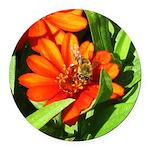 Bee on Orange Daisy Round Car Magnet