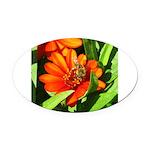 Bee on Orange Daisy Oval Car Magnet