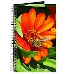 Bee on Orange Daisy Journal