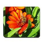 Bee on Orange Daisy Mousepad