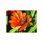 Bee on Orange Daisy 5'x7'Area Rug