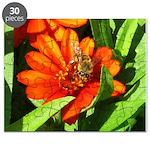 Bee on Orange Daisy Puzzle