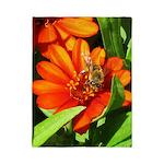 Bee on Orange Daisy Twin Duvet