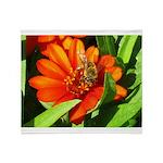 Bee on Orange Daisy Throw Blanket