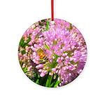 Bee on summer Milkweed Round Ornament