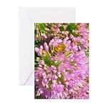 Bee on summer Milkweed Greeting Cards