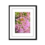 Bee on summer Milkweed Framed Panel Print