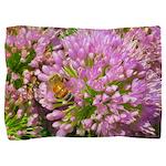 Bee on summer Milkweed Pillow Sham