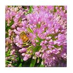 Bee on summer Milkweed Tile Coaster
