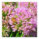 Bee on summer Milkweed Square Car Magnet 3