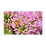 Bee on summer Milkweed Wall Decal