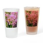 Bee on summer Milkweed Drinking Glass