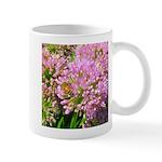 Bee on summer Milkweed Mugs