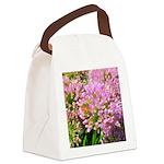 Bee on summer Milkweed Canvas Lunch Bag