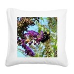 Bee on summer Milkweed Square Canvas Pillow