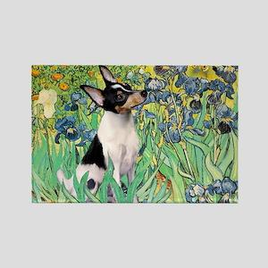Irises / Toy Fox T Rectangle Magnet