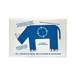 Rhino Facts Rectangle Magnet (100 pack)