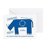Rhino Facts Greeting Cards (Pk of 10)