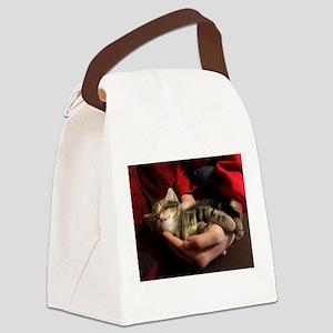 Sleeping Tabby Kitten Canvas Lunch Bag