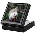 Rare White Squrrel Keepsake Box