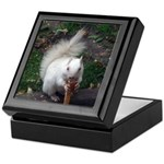 Rare White Squrrel Keepsake Box