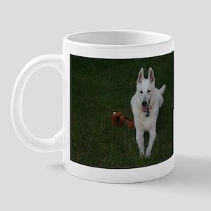 The WGSD Mug