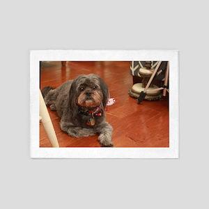 Kna Lhasa type dog on kitchen wood 5'x7'Area Rug