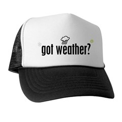 Weather Trucker Hat
